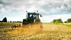 agricoltura.imu.agricola