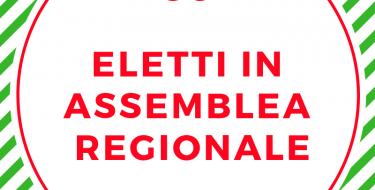 Assemblea Regionale PD – Unione Regionale del Piemonte (eletta il 16 dicembre 2018)