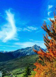 Sfruttamento terreni civici: no all'emendamento Bongioanni contro i comuni montani