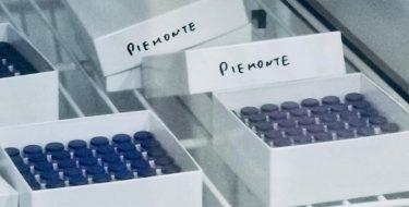 La Giunta dia risposte chiare e tempestive sulla campagna vaccinale